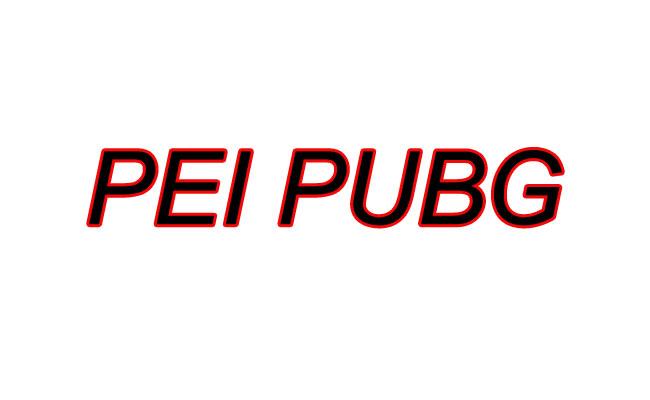 PEI PUBG